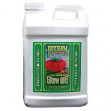 FoxFarm Grow Big  2.5 Gallon