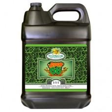 Root 66 10 Liter