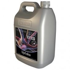 CYCO Uptake 1 Liter