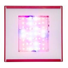 SolarFlare 220W LED Spectral Blend VegMaster