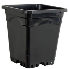 "9""x9"" Square Black Pot 10"" Tall, 24 per case"