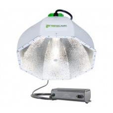 Greenbeams CMh Reflector w/Phantom CMh/3100k Lamp