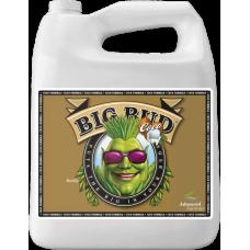 Big Bud Coco 4L