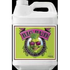 Big Bud 10L