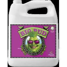 Big Bud Organic-OIM 4L