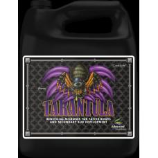 Tarantula 4L
